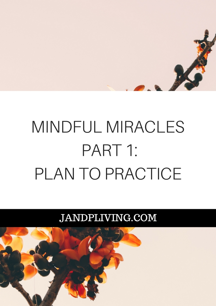 MINDFUL MIRACLES SERIES PART 1 SC