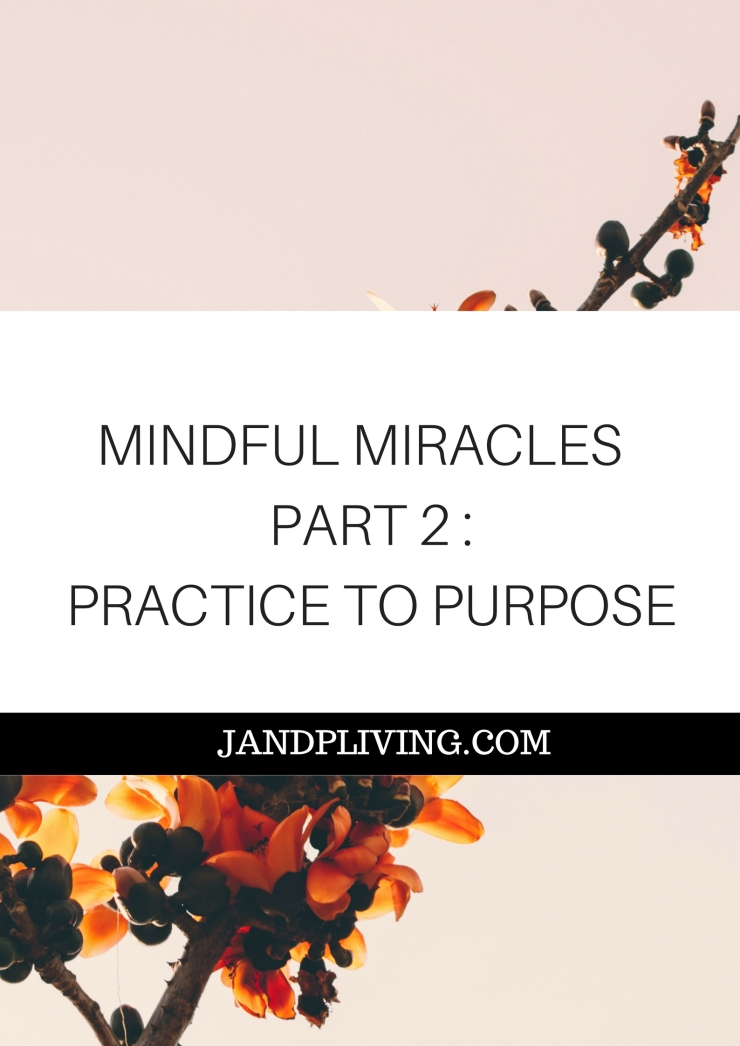 MINDFUL MIRACLES SERIES PART 2 SC